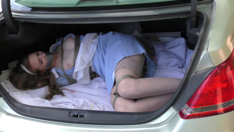 Car Trunk Captive - Ashley Lane the Hotel Maid