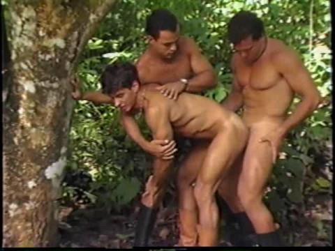 Tropical Orgies At Paradise