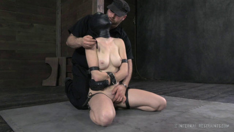 Whipped, Bound and Boxed(Feb 2014)