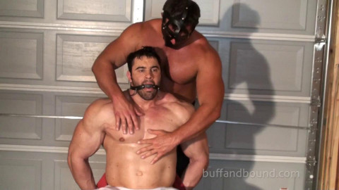 Buff And Bound - Big Max - Chair Bound and Stripped