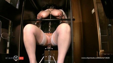 Laceration Mature Babes In The Box