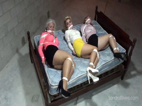 Three Captive MOTHER ID LIKE TO FUCK Secretaries Balltied in the Basement
