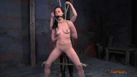 Tortured By Dee