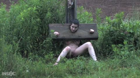 Stocked Slut Part 2 - Sybil Hawthorne