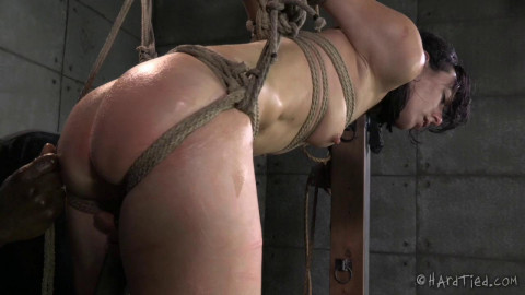 HT - A Bondage Therapy, Part Two - Elise Graves, Jack Hammer