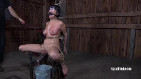 Nyssa Nevers - Rope Mantic