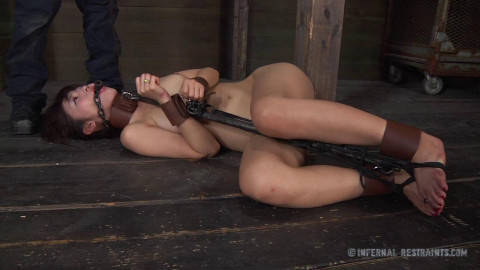 First Domination For Small Asian Marica Hase