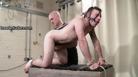 Gareth - bum disciplined to take large jocks drilled with a sextoy