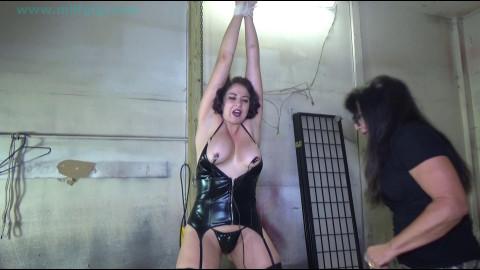 Big titty cuban stretched & tormented