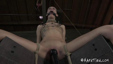 HT - Strong Vibration - Hailey Young - Jun 20, 2012 - HD