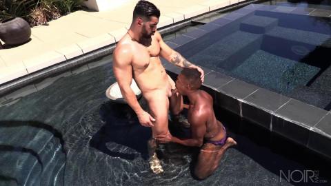 NM - Hey, Pool Boy: Arad Winwin, Adrian Hart Bareback