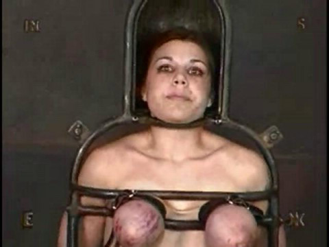 Insex - Rack