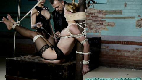 The Torturers Apprentice