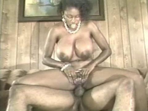 Ebony Ayes Collection(2006)