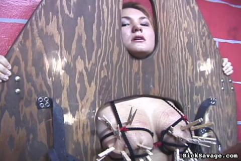 Extreme Tit Torment 3 (2013)