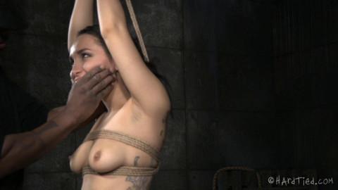 Caged Bird - Gabriella Paltrova, Jack Hammer - BDSM, Humiliation, Torture