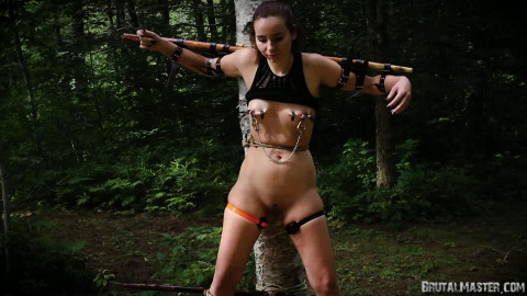 Cono Wood Nymph Torture - Full HD 1080p
