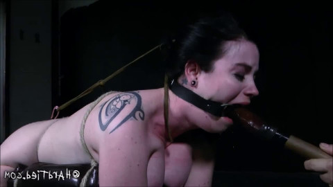 Hard tying, spanking, hog tie and ache hot beauty part 2