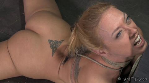 Tie My Tits Tight Please  - Dee Williams, Matt Williams