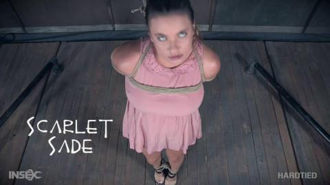 Scarlet Sade - Body Play