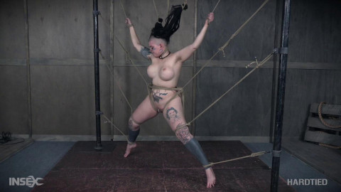 lavey tied