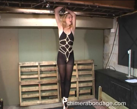 Gold Excellent Mega Hot Unreal Collection Of Chimera Bondage. Part 7.