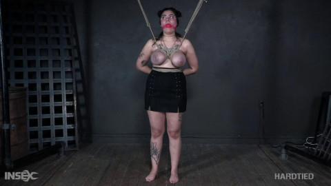 The Tits In Trouble ,  Ella Jane