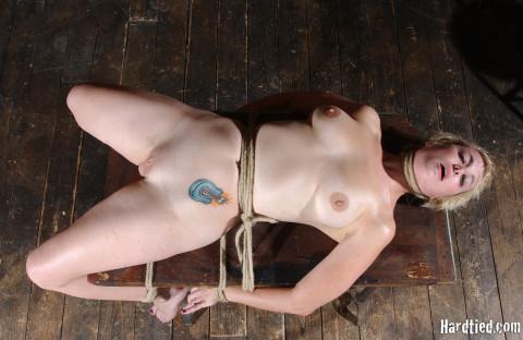 Pretty - Niki Nymph