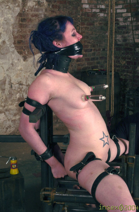 Insex - Sabbatical (Live Feed From January 20, 2002) (Betty)