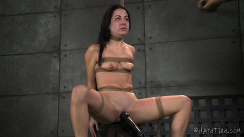 HT - Marley Blaze and Jack Hammer - The Blaze-in Restraint bondage