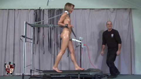 Pony Treadmill Trainer
