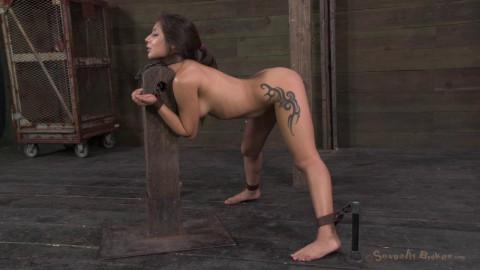 Tiny big-booty hottie