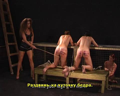 SCHIZO The Black Part (cane)