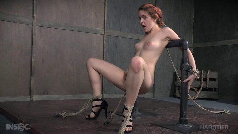 Absolutely appealing - Amarna Miller