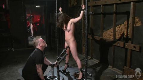 The Whip Chamber - Casey Calvert