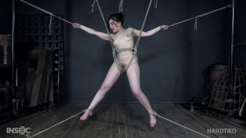 Bdsm HD Porn Videos Manhandled