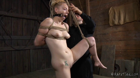 HardTied - Delirious Hunter - Double Jointed