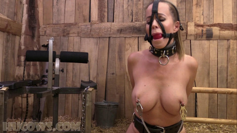 Cindy Dollar – clamped in advance of and after 1080p