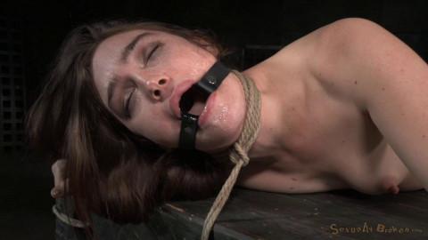 SexuallyBroken - Feb 11, 2015 - Lush brunette Jodi Taylor bent over