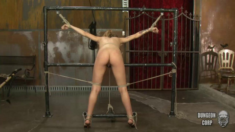 High Intensity Bdsm - Alyssa Branch