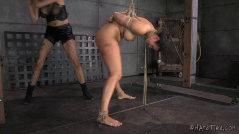 Penny Barber And Rain DeGrey Brat Training No Really, It's Not About You (2014)