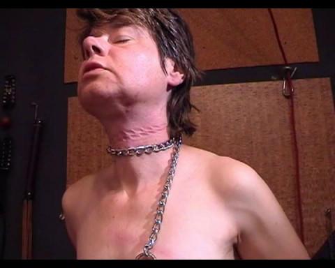 clip no 51 svp