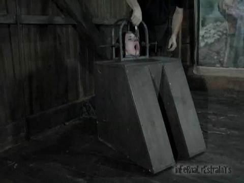 Machine Head   Calico