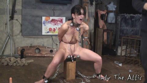Elise Grav torture
