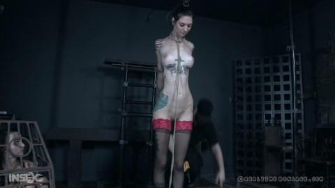 Bdsm HD Porn Videos Rockys Road Part 1