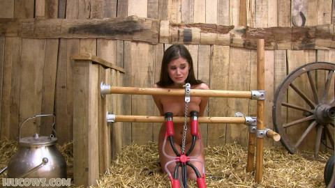 Little Caprice on the red cow milker! (2017)