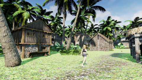 Lilys Island