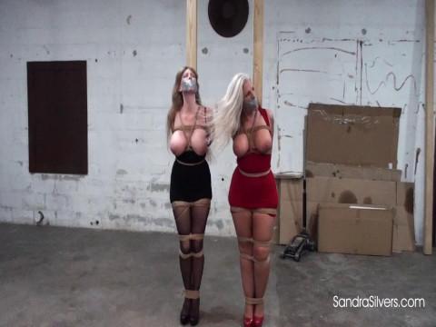 Big-titted MILFs in Clubwear Tied to Pole, Groped POV!