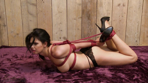 Elbow restraint bondage bound