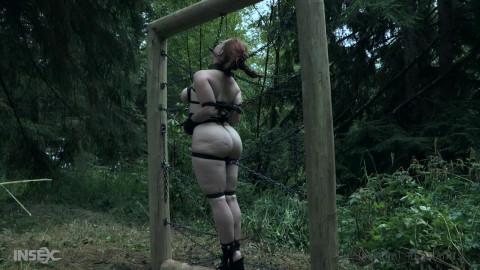 Bdsm HD Porn Videos Groncd